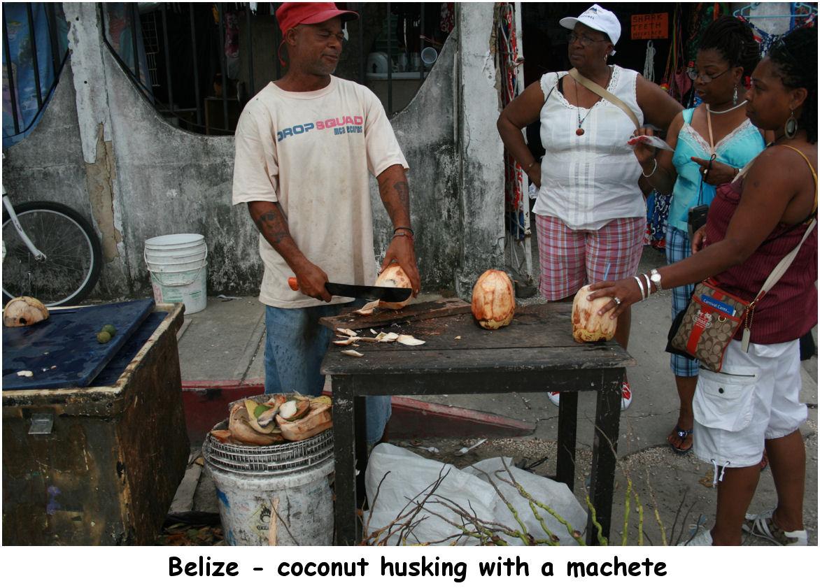 coconuts02