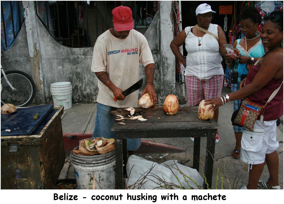 coconuts03
