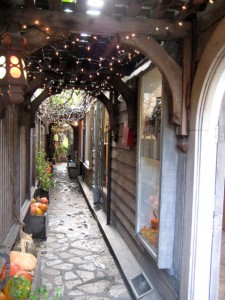 The alley beckons you to explore....
