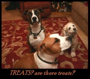 we_three_dogs